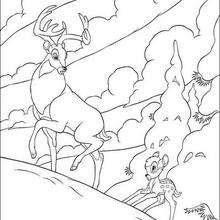 Bambi  3 - Coloring page - DISNEY coloring pages - BAMBI coloring pages