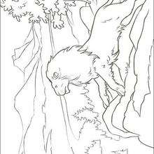 prince caspian free coloring pages - photo#40