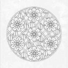 Mandala XXX worksheet
